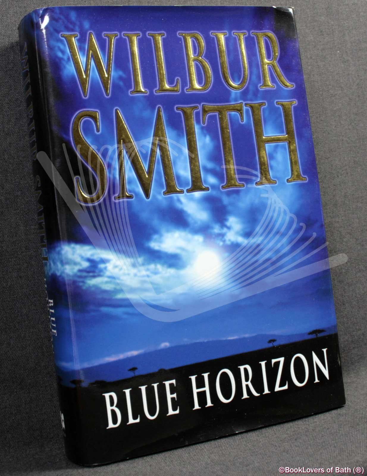 Blue Horizon by Wilbur Smith, 2004 paperback, Courtney novel, free shipping